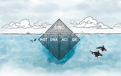 DISC-é-só-a-porta-de-entrada